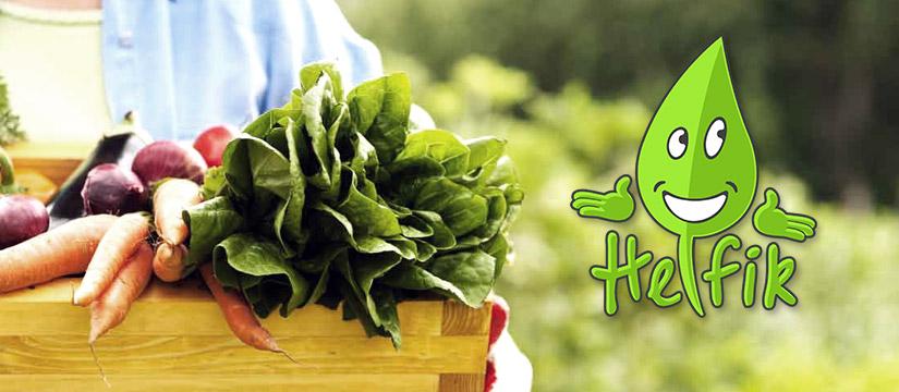 logo dla sklepu ekologicznego