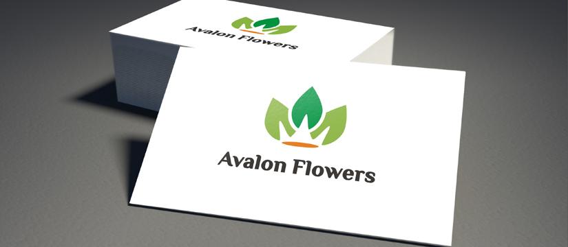 Logo Avalon Flowers - hurtownia roślin doniczkowych