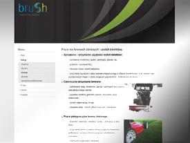 www.brush.com.pl